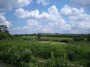 Rolling Farmland (2)
