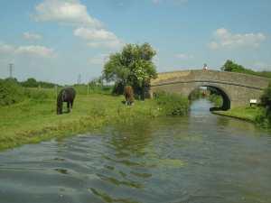 A rural idyll