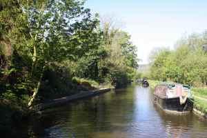 Very nice bottom-of-the-garden moorings (opposite the moored boat)