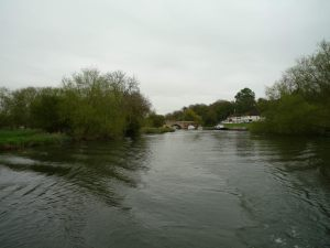 The view downstream towards Shillingford Bridge - the meado on the left's for sale!