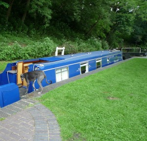 Falling Sands Lock: Mind the gap, Blue!