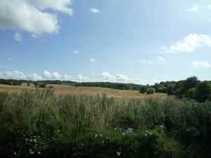 Days gone by - english farmland