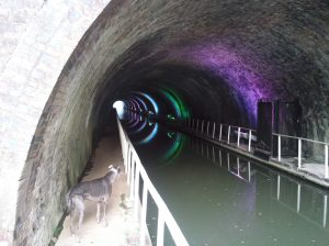 Blue inspecting the lights in the Newbold Tunnel