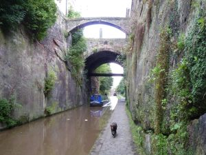 Under Chester's ancient city walls