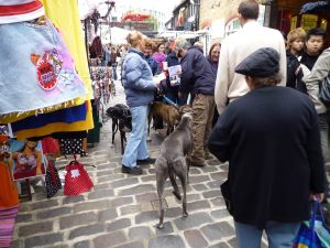 The greyhounds coping very well with the crowds and the attention at Camden Market; they're very adaptable.