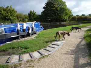 More rummaging on the Marsworth - Blue and Lou had a busy day...