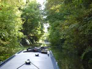 Tring cutting  - cool and dark under the still leafy trees