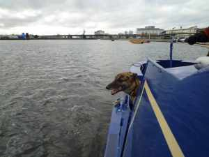 Lou checking out the Royal Docks