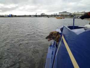 Lou checking out the Royal Docks