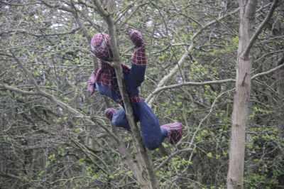 Spiderman up where he belongs :-D