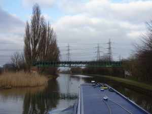 The Lee navigation is a waterway of contrasts - here lined by reeds and pylons...