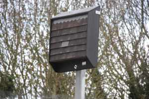 This was on top of a long pole at the old BW site in Marsworth - is it a bat roost?