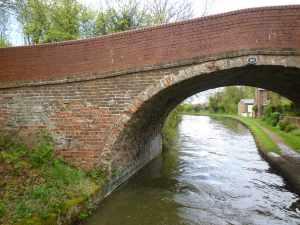 A few of the bridges along here are a bit motheaten...