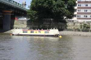 Naarrowboats provide an ideal pied a terre for commuting seagulls :-)