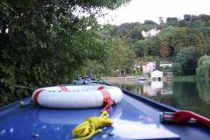 """Our """"hole in the hedge"""" mooring below Marlow Lock - it proved to be a very good spot for the hounds..."""
