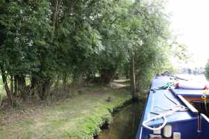We love these quiet mooring spots on the right upstream of March Lock - perfect for greyhounds :-)