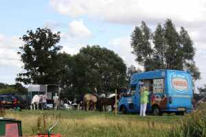 Big gymkhana in Abingdon - now, do ponies like ice cream? Greyhounds certainly do!