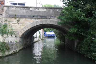 We like taking the right hand channel going downstream in Oxford - it's a hidden world :-)
