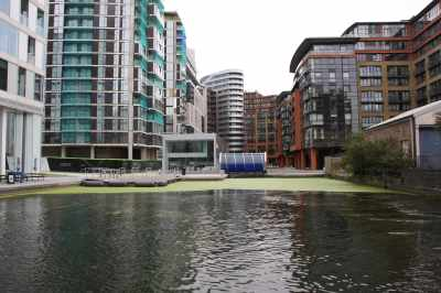 Paddington basin had a thick coating of duckweed when we arrived yesterday - it had retreated a little by morning...