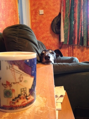 I dunno, iz always hard to gets a gud cup of tee on holidaze...