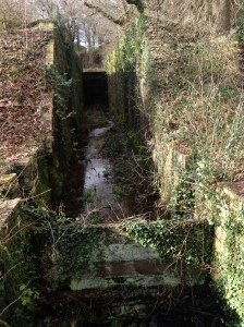 Unlike along some derelict canals, it's clear to see the lock structures - even if the gates are long gone...