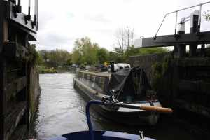 Sharing locks with the delightful nb Blackbird...
