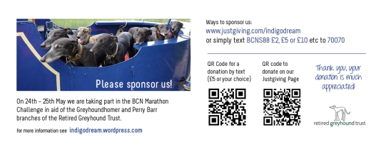 Please support us - even a tiny donation can put a smile on a retired greyhound's face..