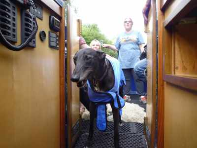 You can't have too many houndie photos - here's Charlie again - he really loved boating! He's wearing a cool coat which is a bit like a chamoiz leather - retains water without being heavy or dripping - clever!