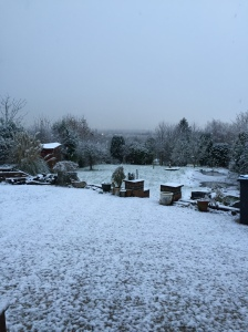 Snow - meh!