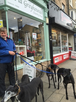 Tia Greyhounds - obviously doing a great job of raising awareness and rehoming hounds - nice shop too :-)