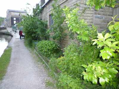 An incredible edible herb bed in Todmorden...