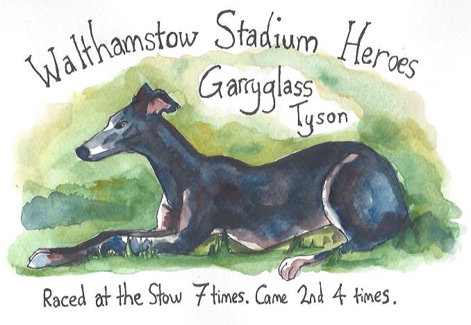 Greyhounds 01 Tyson