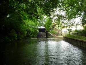 The surprisingly green approach to Enfield Lock...